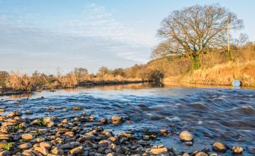 Newton Poppleford & River Otter Circular